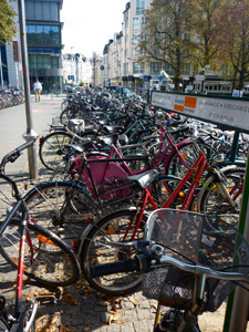 Bicycles in Bonn